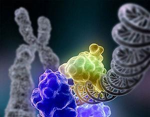 генетическое оружие