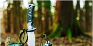 Выживание в лесу