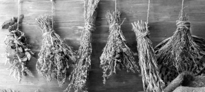 чай и напитки из сушеных трав, гораздо вкуснее самых лучших покупных чаёв